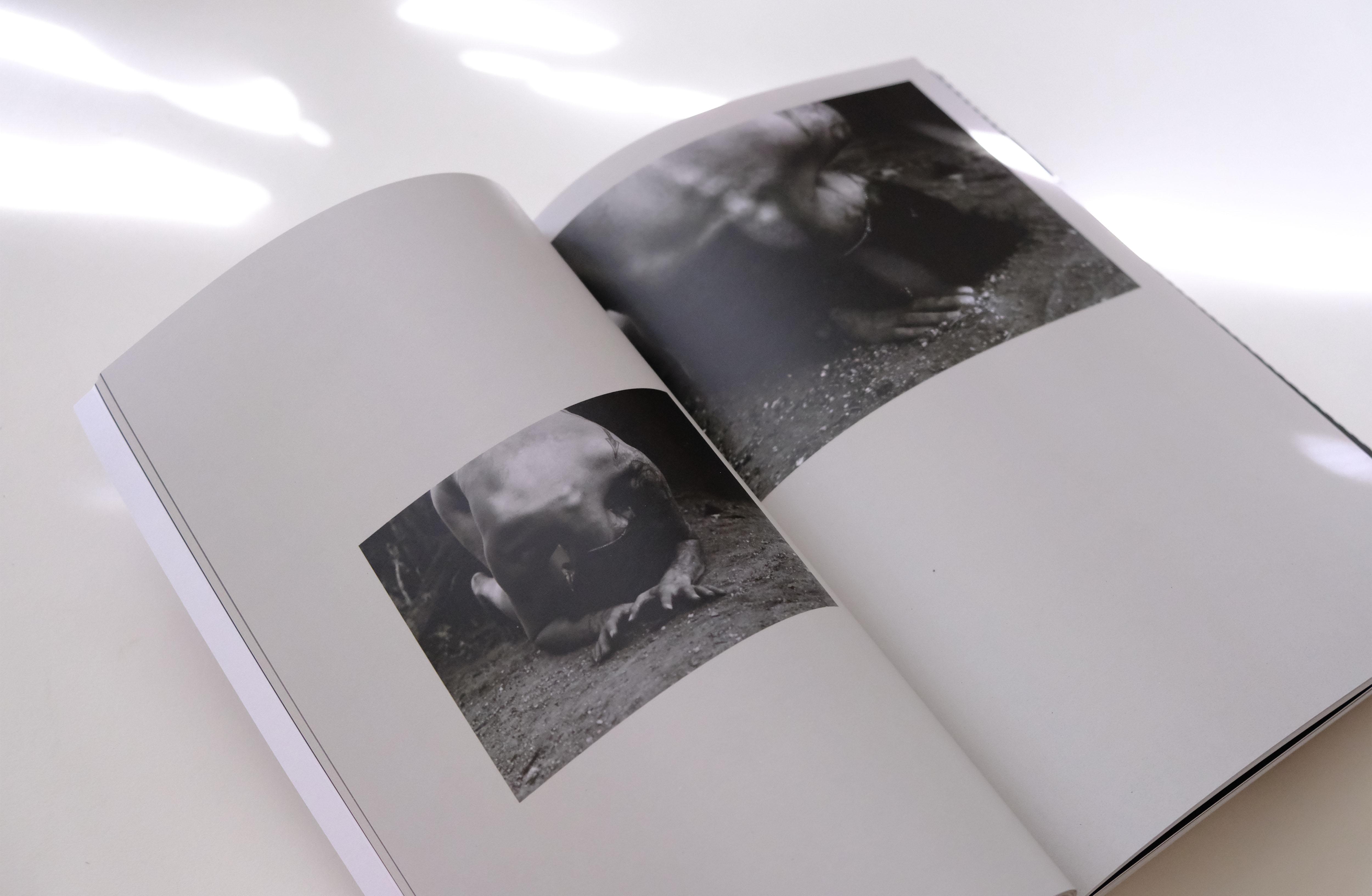 hamerika_book_shots_0010_DSCF0393